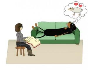 hundpsykolog